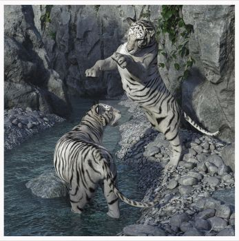 White Tigers At Play by 12CArt