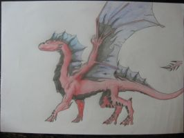 First REAL drawing of a dragon by Plexicity
