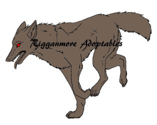 Wolf by rigganmore