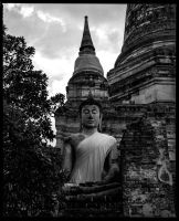 Hidden Buddha by Roger-Wilco-66