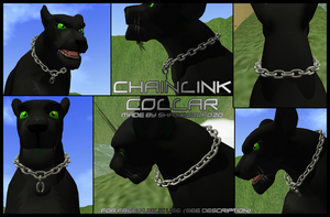 Chainlink Collar ~ IT Item by ShadoWolfozo