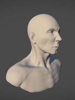 Head Bust by BrandonGlover