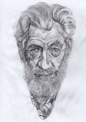 Ian McKellen by Valesco