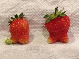 Strawberry People by MogieG123