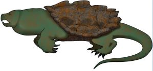 trappertutle by Dragonthunders