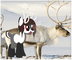 Chirstmas Pony Adopt - Day 8  - Open by Kanean