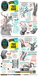 How to draw TREE BARK tutorial by STUDIOBLINKTWICE