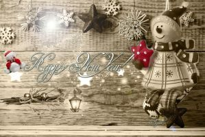 Happy New Year! by andi40