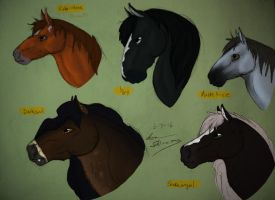 SSO Horse Headshots by horseydino