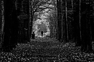 Old man walking at the end of a path by mbrv4ever