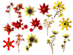 Lilies PNG Stock by Roy3D