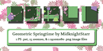 Geometric Springtime Photoshop Patterns by MidknightStarr