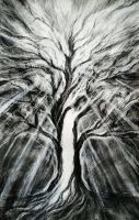The tree within the tree by transe