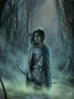 Lost in Swamps by agios