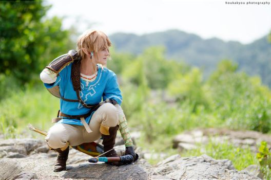 Breath of the Wild by Houkakyou