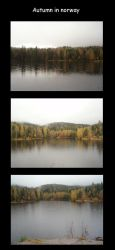 Autumn in norway by SweetMe