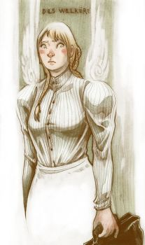 A Valkyrie In Victorian England by fleebites