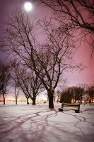 Bellevue Park by Moonlight by tfavretto