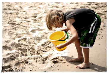 Searching for shells by picturenat