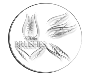 Vector Wings Brushes by DolphinCry