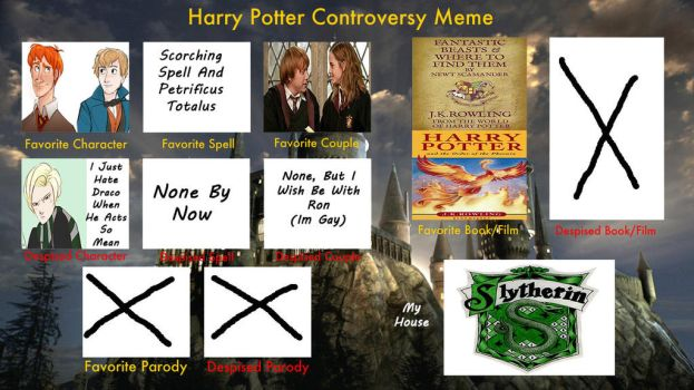 My Harry Potter Controversy Meme by Mr-What-Zit-Tooya