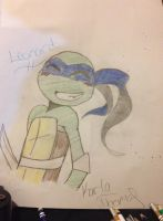 Leonardo by Unknowndemon626