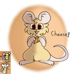 Cheese (Remake) by MinoesTheKitty