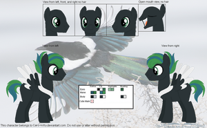 Magpie Official Reference Sheet by Caro-Kitty