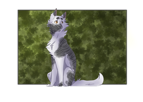 Ivorypaw :commission: by Anonymosss