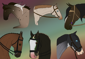 Show Mares by theRyanna