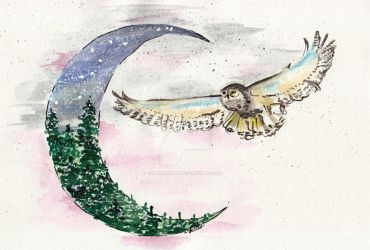 Owl and Moon by UkkiRainbow