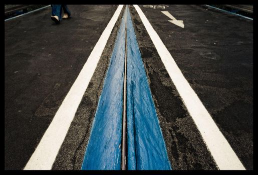 Follow the blue line by butterflyscream
