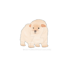 Cute Chow Chow transparent by Cat-Leen