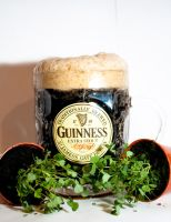 guinness by rosscaughers