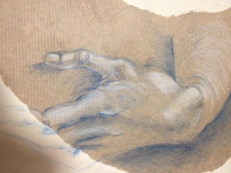 Hand by Lydiapourmand