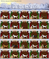 2016 Wiltshire Spaniel Advent Calendar (Completed) by WiltshireClubCouncil