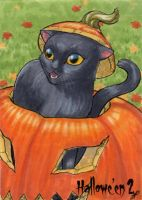 Hallowe'en 2 Sketch Card - Jeena Pepersack 1 by Pernastudios