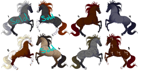 Horse Adopts by Completeperfection
