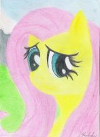 My name is Fluttershy by SkyshadowMeadow