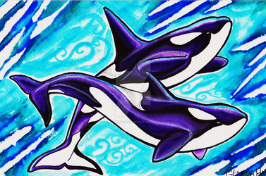 Killer Whales by MitziMonster
