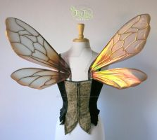 Bee Wings Copper Back