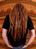 my dreads 6years7months by MaLiBuDreaD