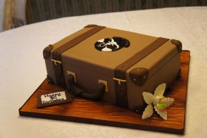 Suit Case Cake by ninny85310