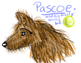 Tablet drawing of Pascoe by Elkmoose