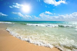 Sunny Beach 14475003 by StockProject1