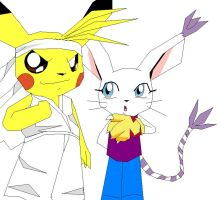 Pikachu and Gatomon by ss2sonic