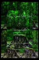 Magical Fairy Woods Stock Pack by FairieGoodMother