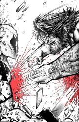 Deadpool V Wolverine by greenhickup