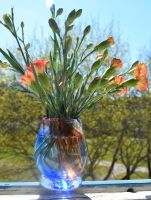 Furnace blown glass vase by fairyfrog