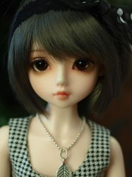 Luts Pine by Pearlserenity